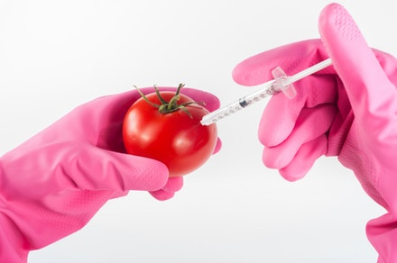 simulating dermal filler injection on tomatoe